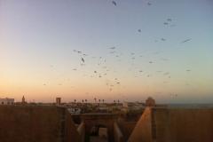 El Jadida, Maroc
